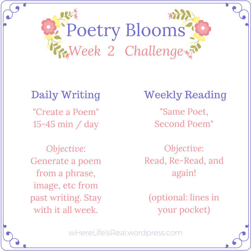 Week 2 challenge
